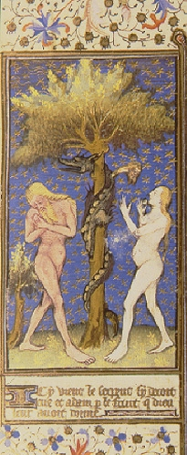 Medieval manuscript illustration depicting a naked Adam and Eve standing next to a tree with the serpent wrapped around its trunk.