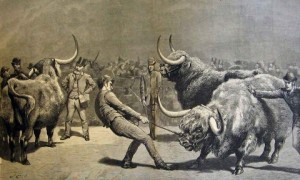 drawing of a man trying to pull a large, stubborn cattle while men in top hats look on