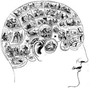 "Illustration of human head with brain divided into a number of different scenes for each ""character attribute"""