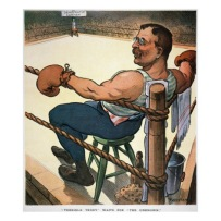 TR boxer