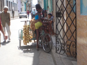Young girl with a bicycle cart full of onions for sale.